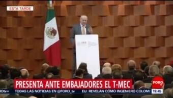 Jesús Seade Resalta Diferencias TMEC TLCAN