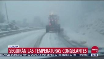 Seguirán Temperaturas Congelantes En Sonora, Temperaturas Congelantes, Sonora, Autoridades De Protección Civil De Sonora, Bajas Temperaturas,