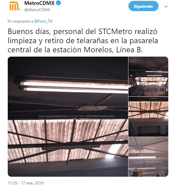Arañas invaden estación Morelos del Metro CDMX
