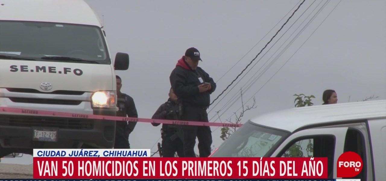 Van 50 homicidios en los primeros 15 días del 2019