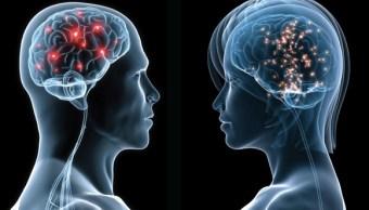 Amor tiene efectos similares a la cocaína en el cerebro