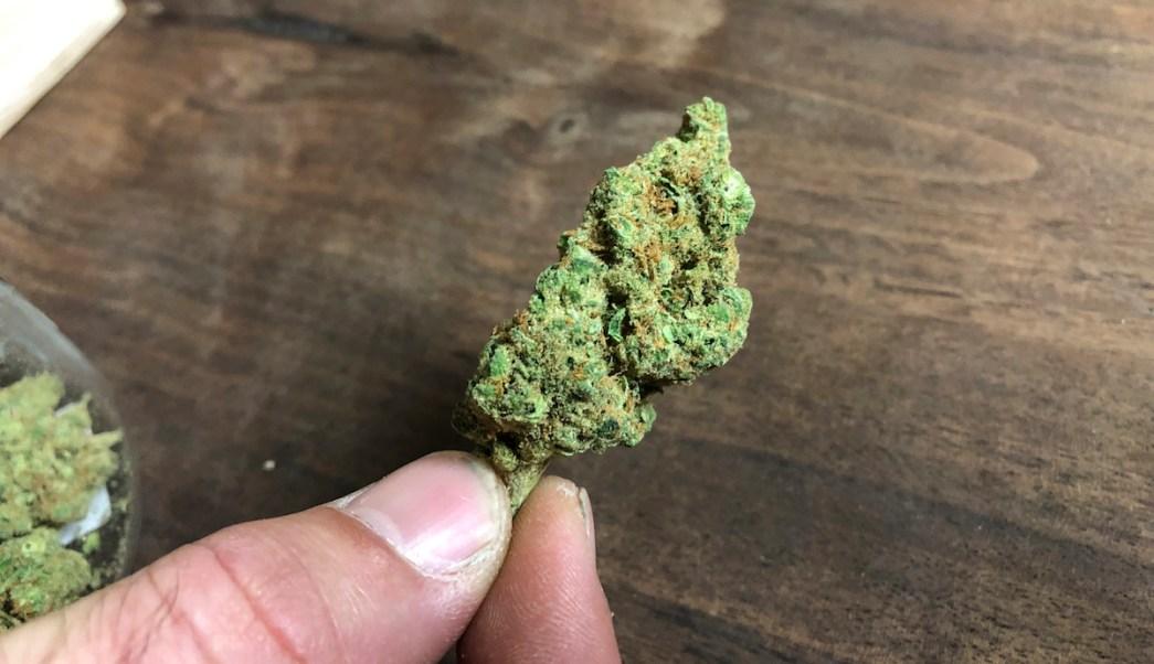 Foto Amparos Marihuana 23 Febrero 2019