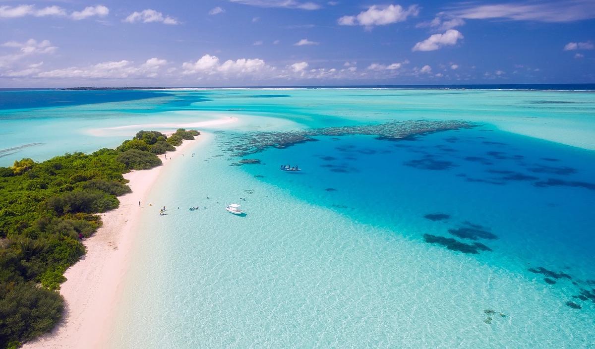 El color de los océanos podría modificarse debido al cambio ...