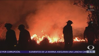 Controlan incendio de pastizales en Xochimilco, CDMX