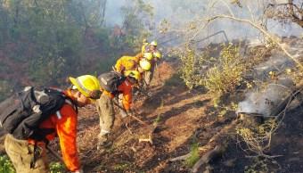 Foto: Brigadistas combaten un incendio forestal en La Araucanía, Chile, el 5 de febrero del 2019