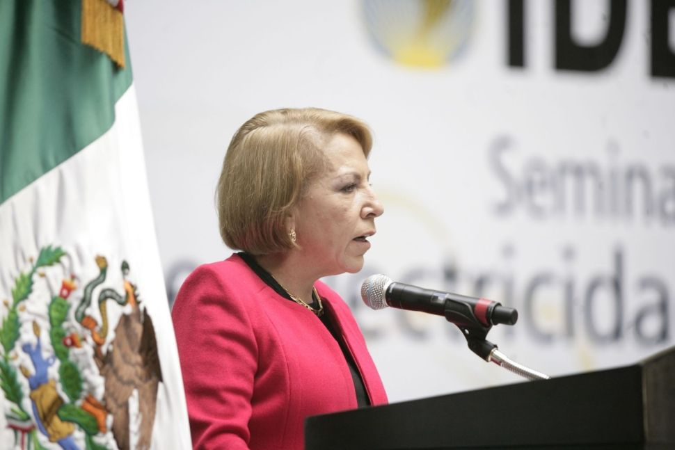 Georgína Kessel Martínez es actualmente directora de la división mexicana de la empresa española Iberdrola (Archivo)