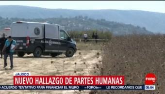 Hallan restos humanos en Zapopan, Jalisco