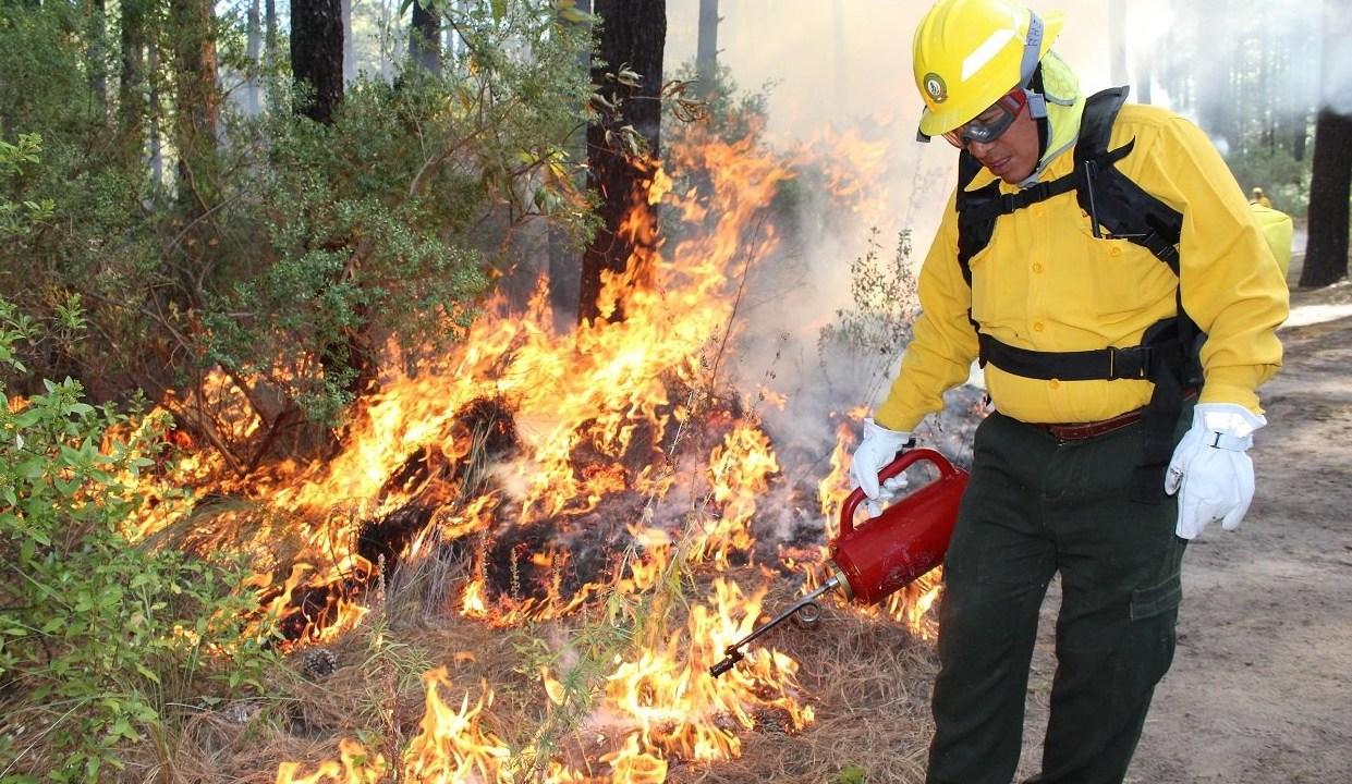 Foto: Prohíben quemas agrícolas en Chiapas, 27 de diciembre 2018. Twitter @CONAFOR