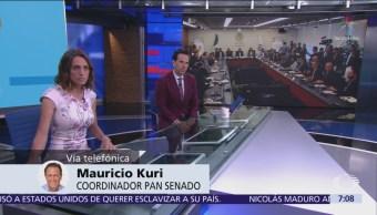 Kuri: El PAN está unido en postura sobre Guardia Nacional