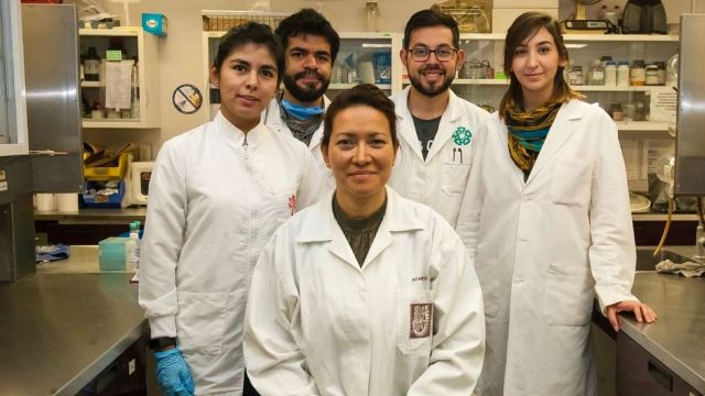 Foto: El estudio fue encabezado por la científica Eva Ramón Gallegos del IPN del 3 de febrero de 2019