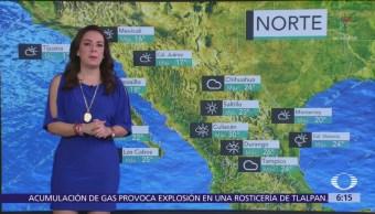 Pronostican ambiente cálido y vientos fuertes en México