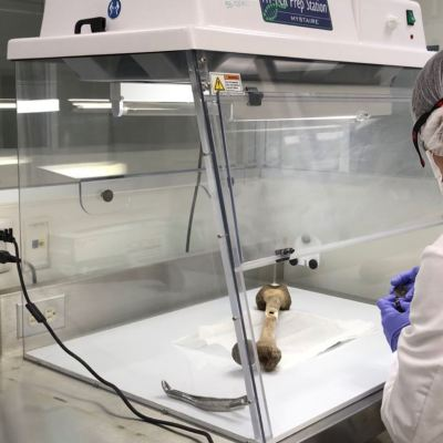 Inician pruebas para identificar cuerpos localizados en fosas en Tecomán, Colima