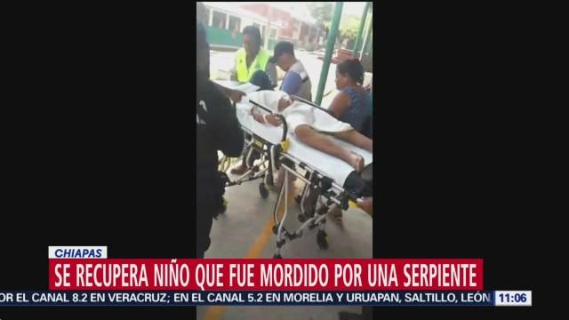Se recupera niño que fue mordido por una serpiente en Chiapas