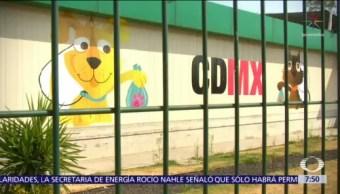 Secretaría de Salud argumenta irregularidades en Hospital Veterinario CDMX