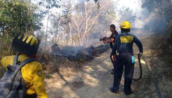 Foto: Bomberos de Acapulco trabajan para combatir un incendio forestal, 30 marzo 2019