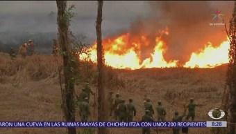 Bomberos sofocan otro incendio en pastizales de Xochimilco, CDMX