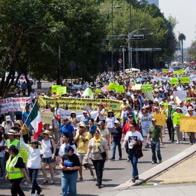 'Chalecos amarillos' protestan contra los 100 días del Gobierno de AMLO