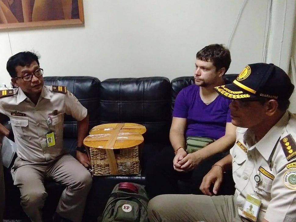 Foto: Turista ruso que intentó sacar de contrabando un orangután en la isla turística de Bali, 24 marzo 2019
