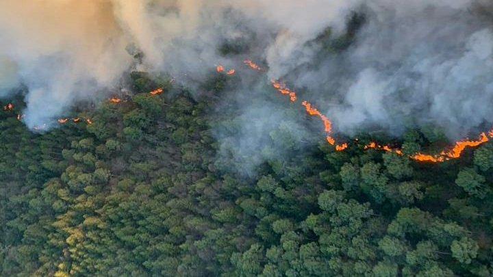 Foto: Desalojan a 2 mil personas por incendio en Las Vigas, Veracruz 12 marzo 2019