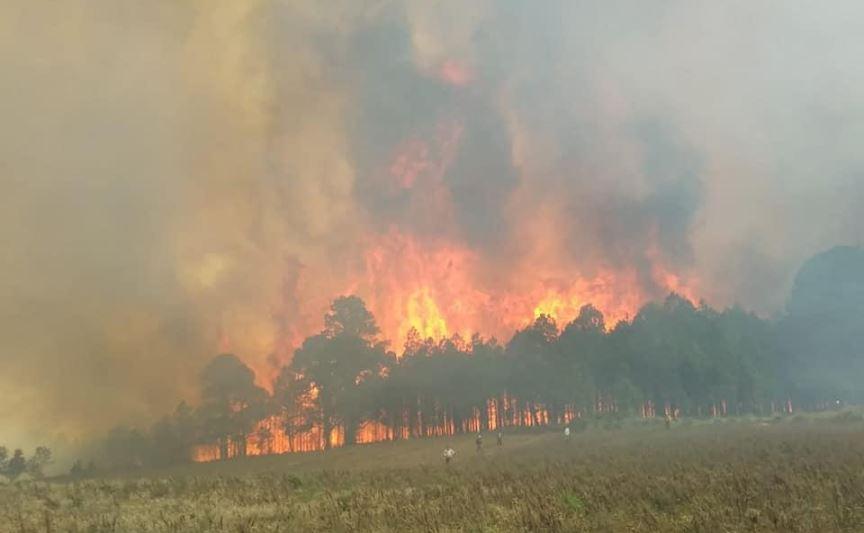 Foto: Desalojan 2 mil personas por incendio en Las Vigas, Veracruz 12 marzo 2019