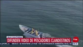 FOTO: Difunden video de pescadores clandestinos en Baja California, 31 Marzo 2019