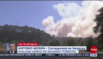 Evalúan daños del incendio forestal en Las Vigas, Veracruz
