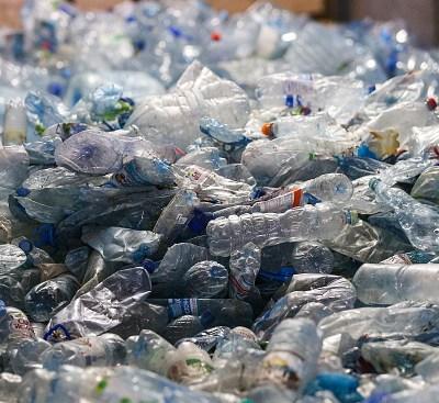 Encuentran 40 kilos de plástico en estómago de ballena muerta