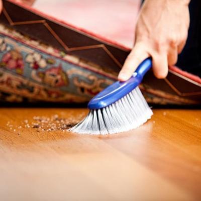 ¡Enemigo en casa! El polvo doméstico podría hacerte engordar