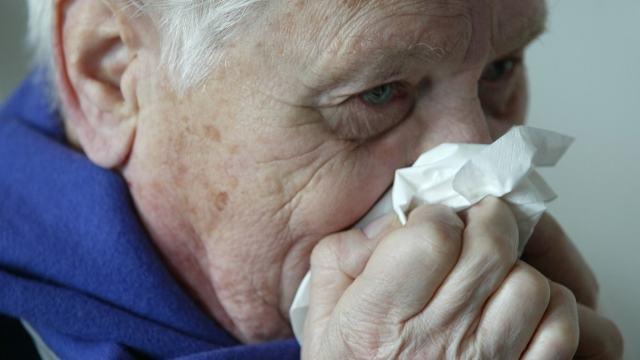 FOTO Gripe, el mundo se debe preparar para una pandemia, dice la OMS AP, 14 enero 2005