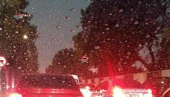 Frente frío 41 provoca lluvia, granizo, encharcamientos, la caída de un árbol y una rama en la CDMX