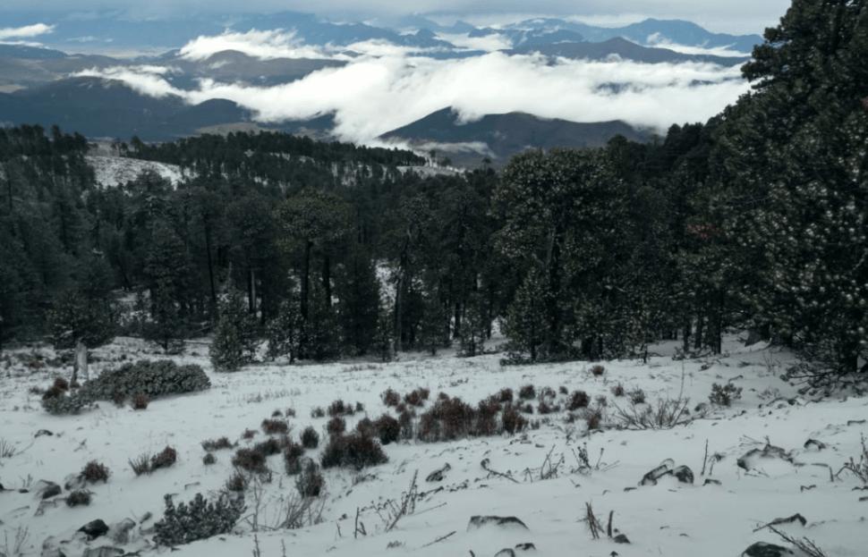 FOTO Nieve cubre el Cerro del Potosí, en Nuevo León, a días de que inicie la primavera Protección Civil 18 marzo 2019
