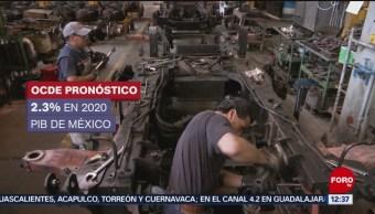 OCDE revisa a la baja pronóstico de crecimiento para México