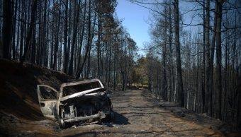 controlan incendio forestal en las vigas veracruz