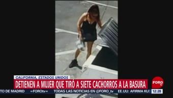 Arrestan a mujer que tiró bolsa con perritos a la basura