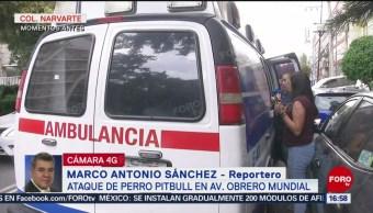 Foto: Ataque de perro Pitbull en Avenida Obrero Mundial, CDMX, deja un herido