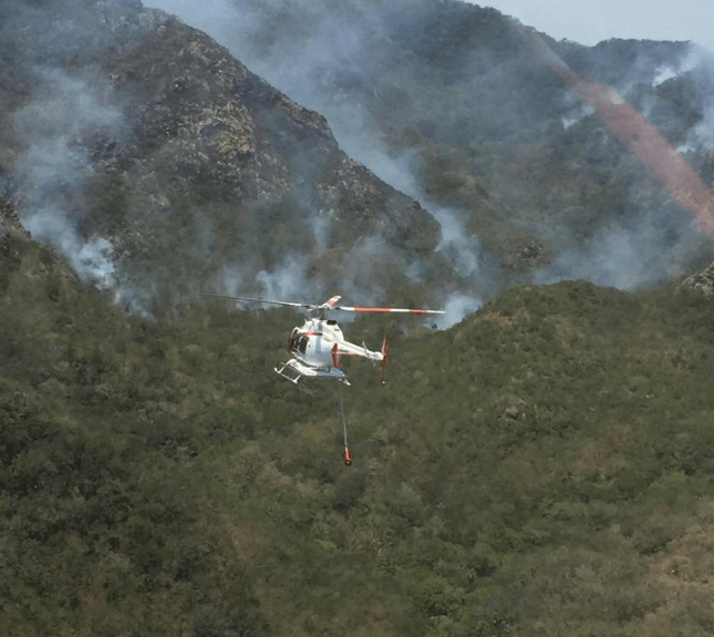 Foto: Combate a incendio forestal en Veracruz, abril 2019, México