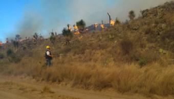 Foto: brigadistas contra incendios forestales en Puebla. 11 de abril 2019. Twitter @PC_Estatal