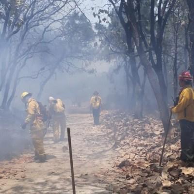 Incendio en Bosque de la Primavera ha afectado mil 900 hectáreas