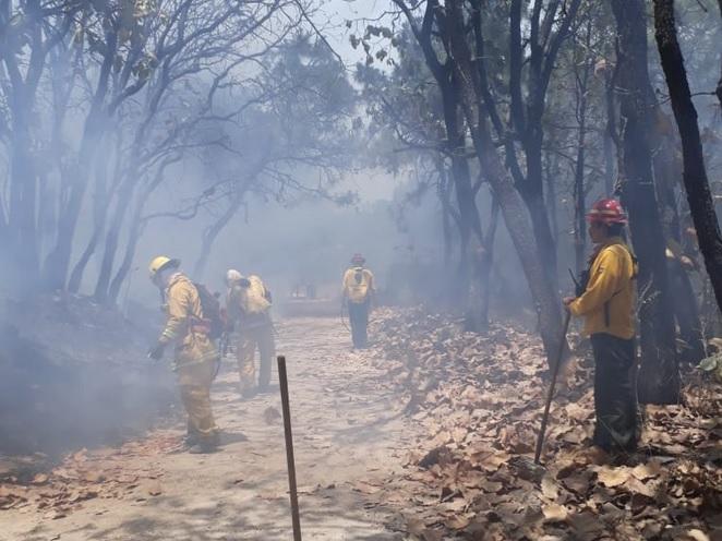 Foto: daños en el Bosque de La Primavera, 13 de abril 2019. Twitter @PCJalisco