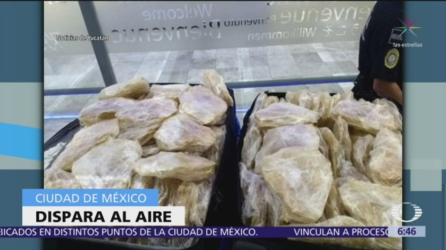 Decomisan buche de totoaba en aeropuerto de Mérida, Yucatán