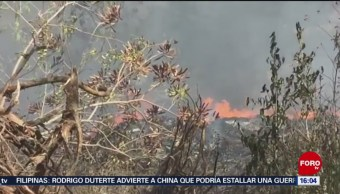 FOTO: Dos incendios forestales consumen áreas naturales en Quintana Roo, 7 de abril 2019