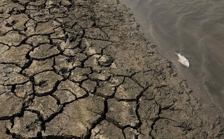 'El Niño' será débil; habrá altas temperaturas y menos lluvias: Conagua