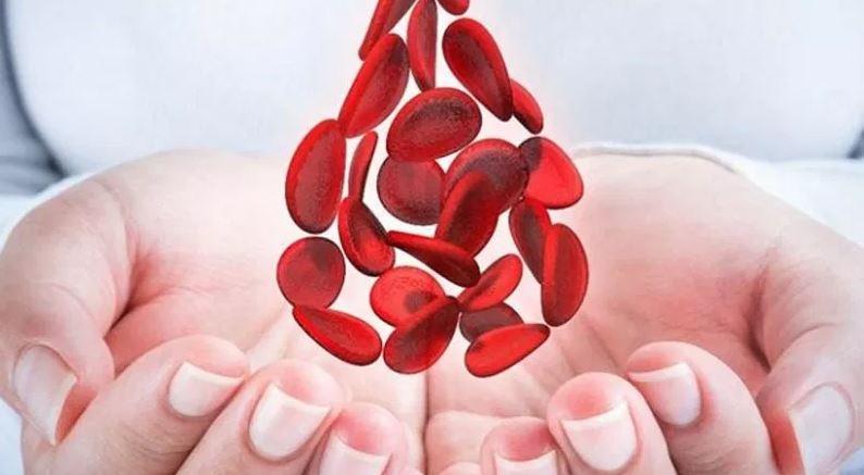 Realizan caminata por Día Mundial de la Hemofilia