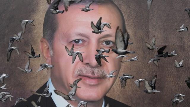 Foto: Las palomas vuelan frente a un gran póster del presidente turco Tayyip Erdogan en Bursa, Turquía, 6 de abril de 2019 (Reuters)