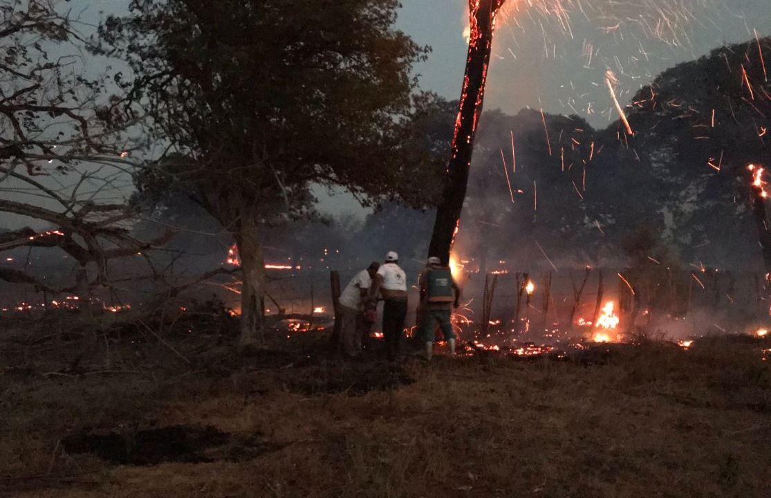 Foto: Brigadistas trabajan para apagar un incendio forestal en Pijijiapan, Chiapas, 27 abril 2019