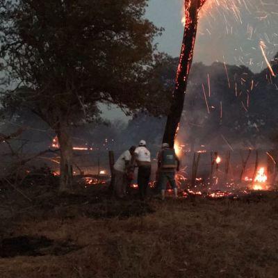 Chiapas solicita la declaratoria de emergencia por incendios forestales