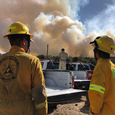 Incendio en Bosque de la Primavera activa contingencia ambiental en Jalisco