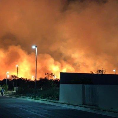 Incendio consume 200 hectáreas en manglar Los Petenes, en Campeche