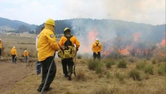 Foto: combate de incendio forestal, 18 de abril 2019. Twitter @CONAFOR