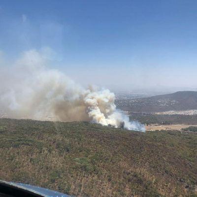 Contienen incendio en el Bosque de la Primavera en Jalisco